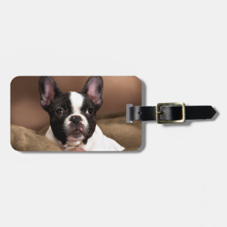 Boston Terrier Tag For Luggage