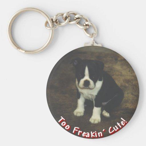 Boston Terrier:  También Freakin lindo Llaveros Personalizados