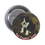 Boston Terrier:  También Freakin lindo Pins