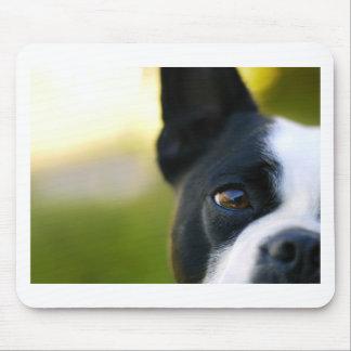 Boston Terrier Tapete De Raton