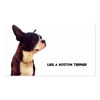 Boston Terrier Tarjetas De Visita