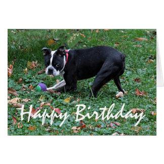 Boston Terrier Tarjeta De Felicitación