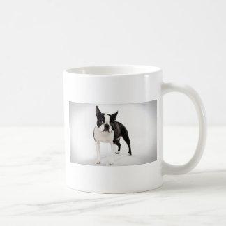 Boston Terrier Taza De Café