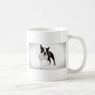 Boston Terrier Taza Básica Blanca