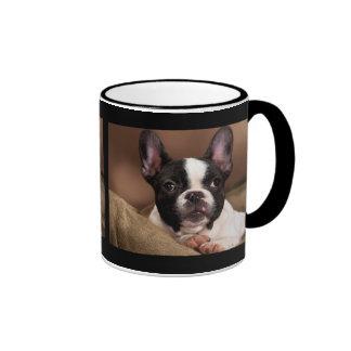 Boston Terrier Taza De Dos Colores