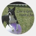 Boston Terrier:  ¡Tenga una bola! Etiquetas Redondas