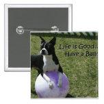 Boston Terrier:  ¡Tenga una bola! Pin