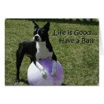Boston Terrier:  ¡Tenga una bola! Tarjeta