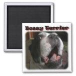Boston Terrier:  Terrier mandón Iman De Nevera
