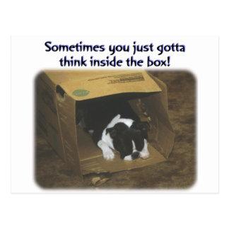 Boston Terrier:  Think Inside the Box Postcard