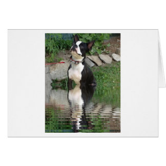 Boston Terrier thinking about you card