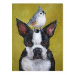 Boston Terrier & titmouse postcard
