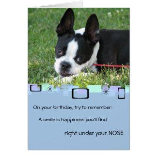 Boston Terrier toda la tarjeta de felicitación de