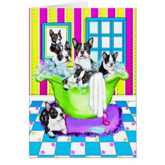 Boston Terrier Tub Full Greeting Card
