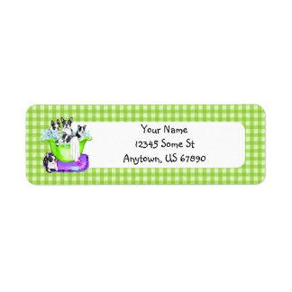 Boston Terrier Tub Full Labels