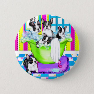 Boston Terrier Tub Full Pinback Button