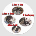 Boston Terrier:  Una época Etiquetas