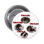 Boston Terrier:  Una época Pins