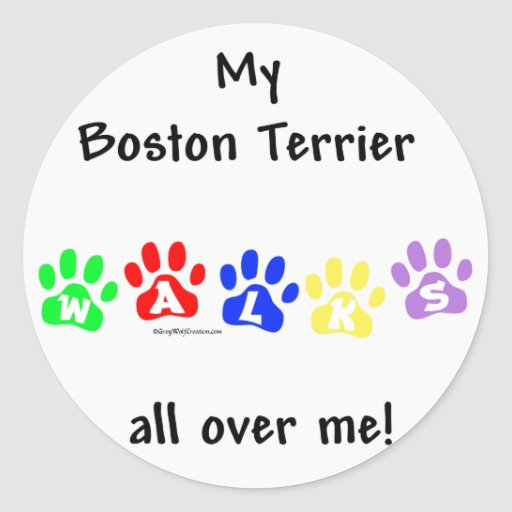 Boston Terrier Walks All Over Me Classic Round Sticker