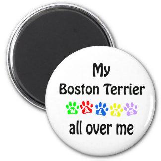 Boston Terrier Walks Design Magnet