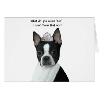 "Boston Terrier:  What Do You Mean ""No""? Card"