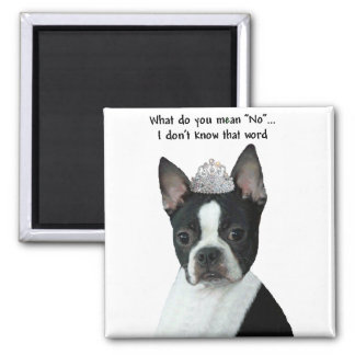 "Boston Terrier:  What Do You Mean ""No""? Magnet"