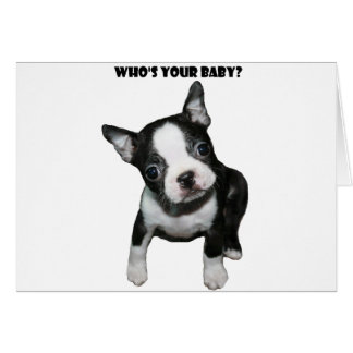 Boston Terrier:  Who's Your Baby? Card