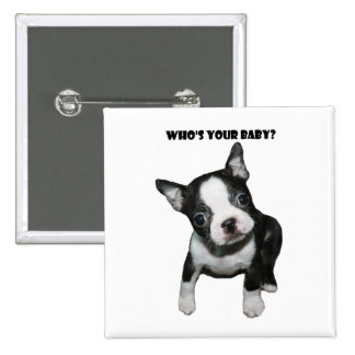 Boston Terrier:  Who's Your Baby? Pinback Button
