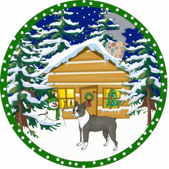 boston terrier winter cutout