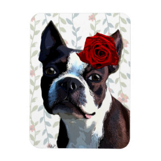 Boston Terrier with Rose on Head 2 Rectangular Photo Magnet