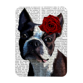 Boston Terrier with Rose on Head Rectangular Photo Magnet