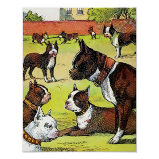 Boston Terrier y ejemplo del vintage de los perrit Póster