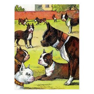 Boston Terrier y ejemplo del vintage de los perrit Postal