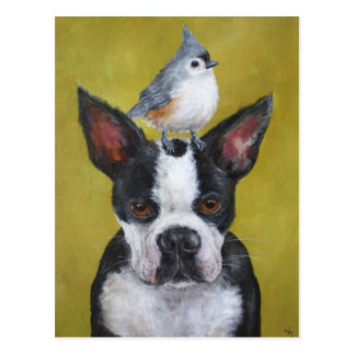 Boston Terrier y postal del titmouse