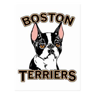 Boston Terriers Mascot Postcard