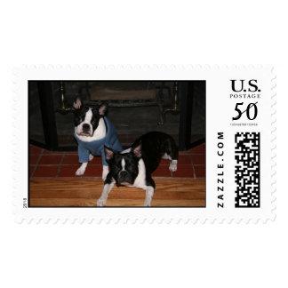 Boston Terriers Postage