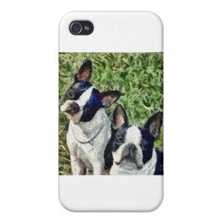 Boston Terriers - Skipper & Dee Dee iPhone 4/4S Cases