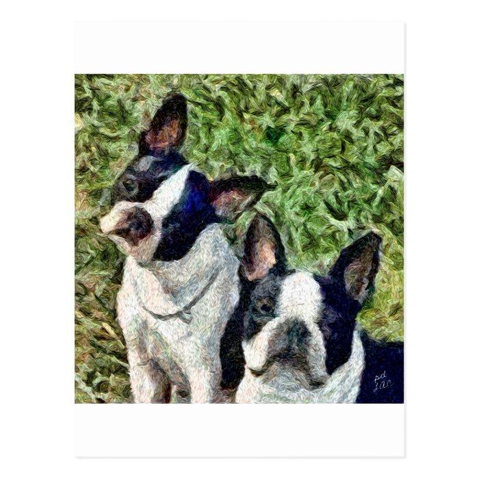Boston Terriers - Skipper & Dee Dee Postcard