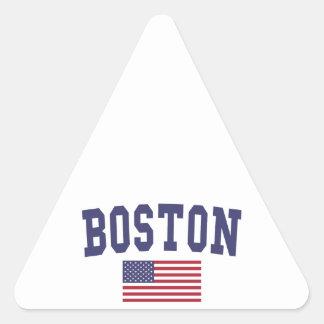 Boston US Flag Triangle Sticker