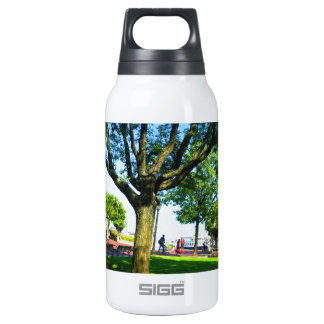 Boston USA America  Green Nature Photography 10 Oz Insulated SIGG Thermos Water Bottle