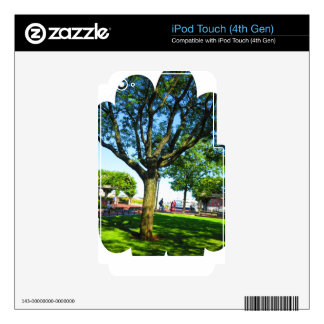 Boston USA America  Green Nature Photography iPod Touch 4G Decals