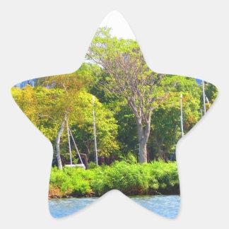 Boston USA America  Green Nature Photography Star Sticker
