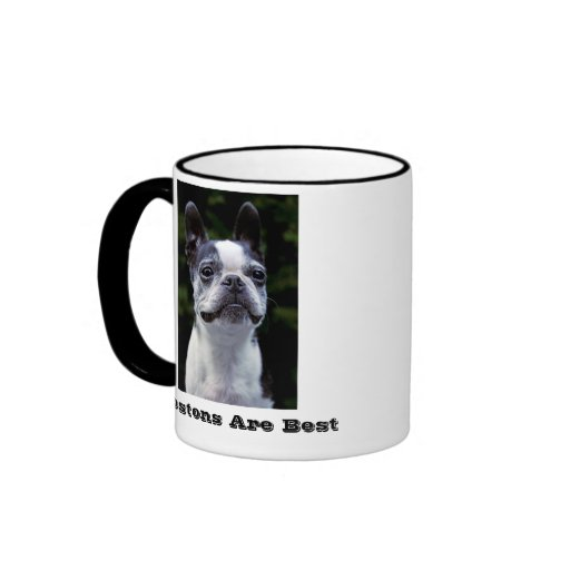 Bostons es la mejor taza de Boston Terrier