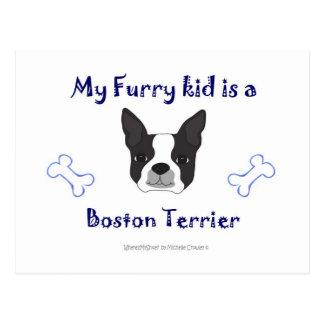 BostonTerrier Postcard