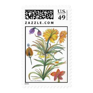 botanic52 stamp