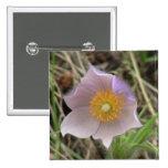 Botánica de las flores de los Wildflowers de la fl Pins