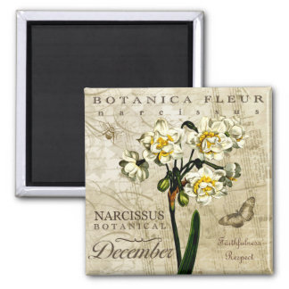 Botanica December 2 Inch Square Magnet