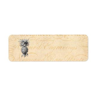 Botánica del ejemplo de la piña de los 1800s del v etiqueta de remite