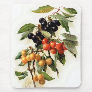 Botanical Cherries Print Mouse Pad