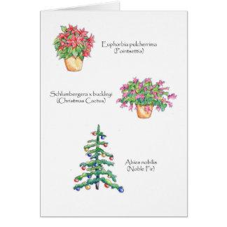Botanical Christmas Card
